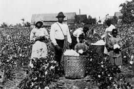 Slavery and Institutions for Negroes-A Reply_FE(1)